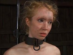 Chick gets her smooth gazoo whipped during torture
